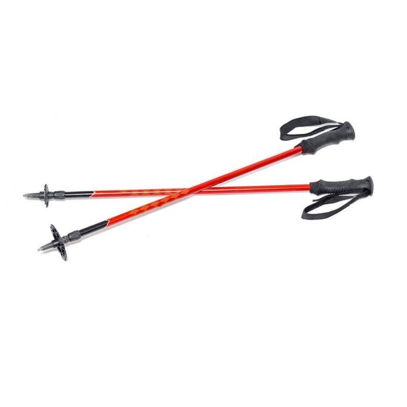 Ski Pole stick